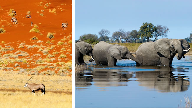Best of Namibia & Botswana